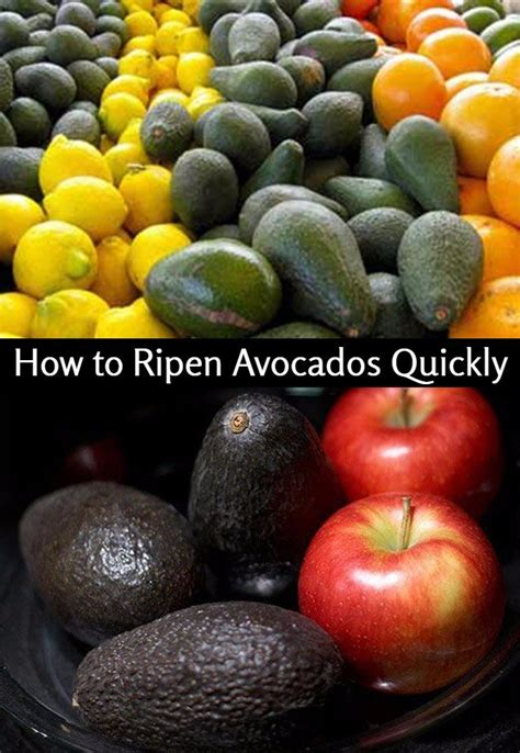 how to ripen avocados how to ripen avocados fast and naturally superfood profiles