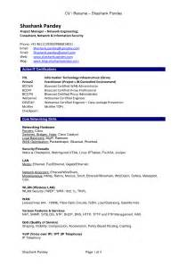 resume exles 10 best resume pdf templates basic