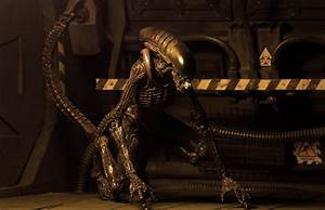 New Photos of NECA's Alien 3 Dog Alien Figure - The Toyark ...