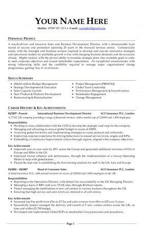 Writing A Professional Cv by Best Photos Of Professional Cv Exles Professional Cv