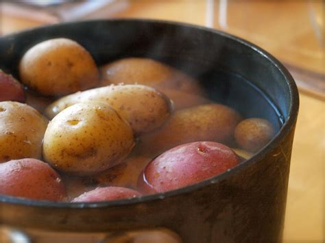 how to boil potatoes for boiling potatoes minnesota locavore