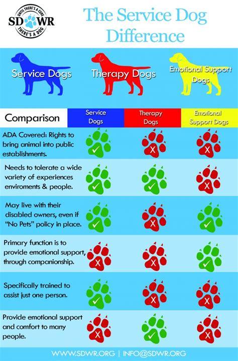 diabetic alert dogs  sdwr service dog law diabetic