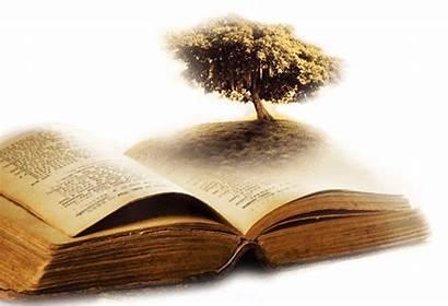 Tree Bible Christ God Coming Film Church