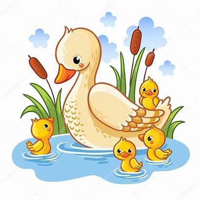 Duck Clipart Ducklings Duckling Eendjes Patitos Pato