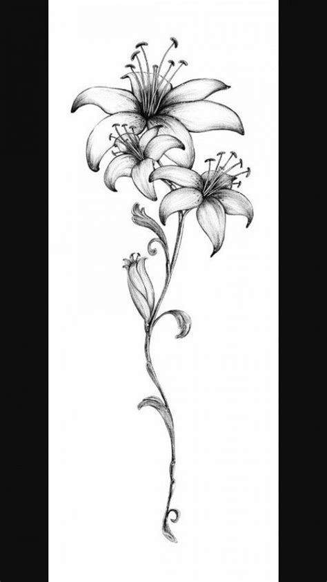 250+ Lily Tattoo Designs With Meanings (2020) Flower ideas & Symbols | Tattoo Ideas 2020