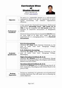 professional curriculum vitae format template resume builder With cv resume sample
