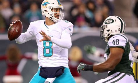 dolphins dominate  jets