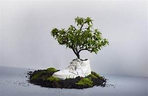 Garten Bepflanzen Ideen : was tun mit alten schuhen von denen du dich nicht trennen ~ Lizthompson.info Haus und Dekorationen