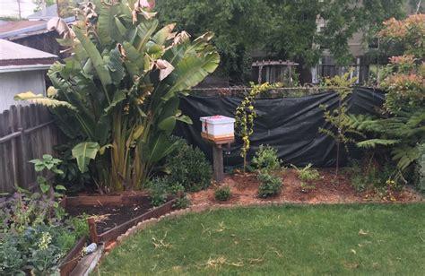 Backyard Bee Hive  Outdoor Goods