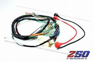 Aftermarket Honda Monkey Z50 Wire Harness