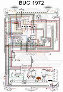 Wiring Manual Pdf  11x17 Color Wiring Diagram 1971 Vw