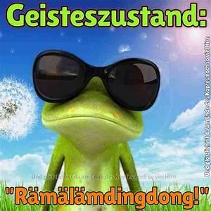 Frosch Bilder Lustig : 441 besten lustig bilder auf pinterest lustige bilder lustige spr che und coole spr che ~ Whattoseeinmadrid.com Haus und Dekorationen