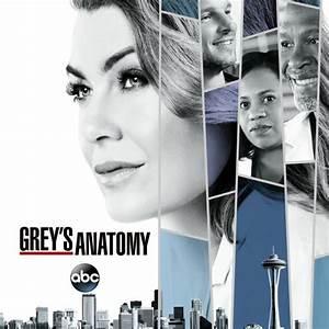 Grey's Anatomy, Season 14 on iTunes