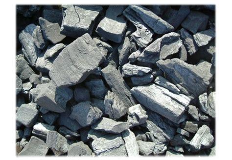 le charbon de bois utiliser le charbon de bois pour avoir les dents blanches saluteo info