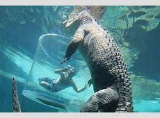 Drunk teens taunt Burt, star of Crocodile Dundee, at