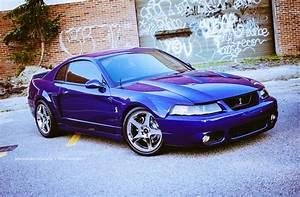 """Special Vehicle Team™ on Twitter: """"2004 Sonic blue #Cobra... #Terminator #SN95 #SVT_Cobra https ..."""