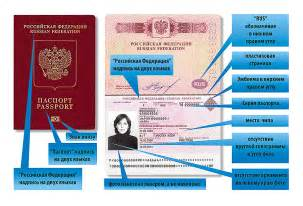 Новый загранпаспорт на 10 лет документы