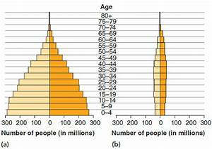 Interpret Data Consider The Age Structure Diagrams For
