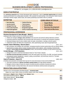 experience in marketing resume digital marketing resume exle sourceline