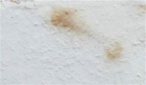 Flecken An Der Wand Ausbessern : bilder zu schimmelpilze und schimmelsch den ~ Lizthompson.info Haus und Dekorationen
