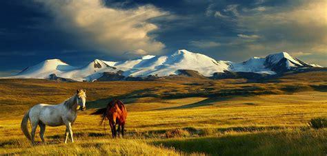 teach  mongolia teach
