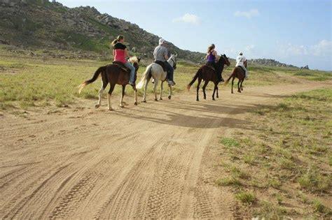 riding horseback tour aruba tours malmok cunucu