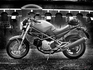 Ducati Workshop Manuals Resource  Ducati Monster 400 2000