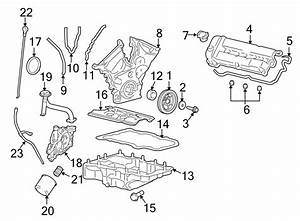 Ford Escape Fuel Injection Throttle Body Mounting Gasket