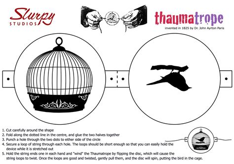 thaumatrope template bird cage the history of animation beginnings of animation