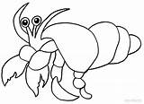 Crab Hermit Coloring Pages Printable Sea Sheets Drawing Cool2bkids Activities Clipart Print Getdrawings sketch template