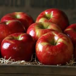 Honeycrisp Apple's
