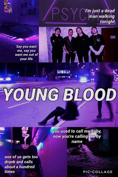 Youngblood 5sos Lyrics Aesthetic Want You Back Five