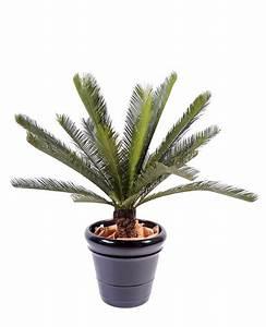 Palmier Artificiel Gifi : palmier artificiel cycas tronc plante int rieur ext rieur cm vert ~ Teatrodelosmanantiales.com Idées de Décoration