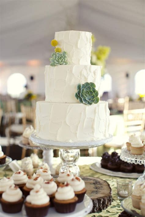 Simple White Cake Topped With Succulents By Sugar Bee