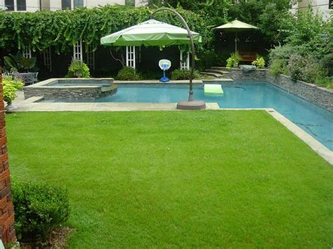 Backyard Grass by The Backyard Oasis With Lush Grass Yard And Resort Style