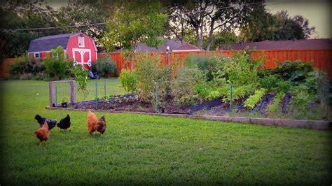 Vegetable Garden Time For Fall Gardening Youtube
