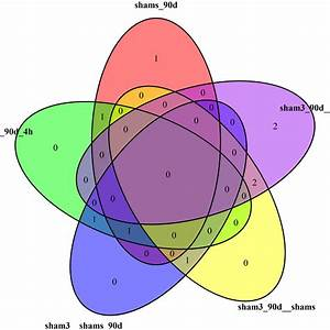 R - How To Force The Labels To Fit In Venndiagram