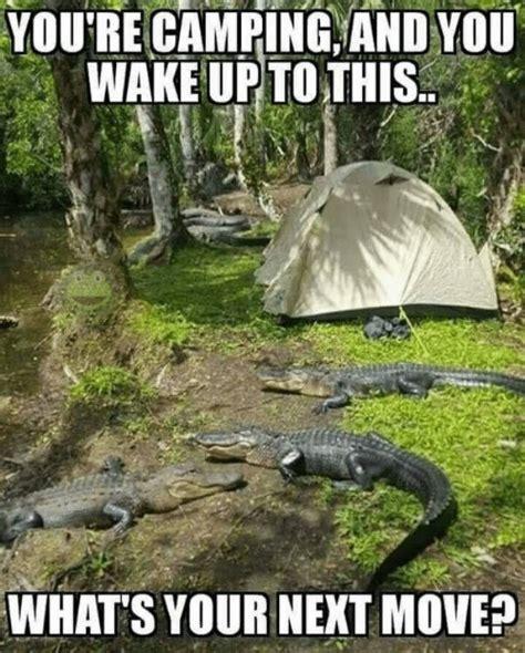 memes   comfortable   campfire