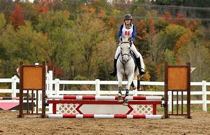 Jumping Lesson Horseriding Horse Riding Jump