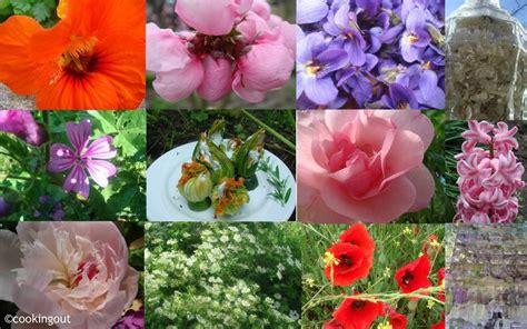 cuisine saveur voici une liste de 42 fleurs comestibles à déguster