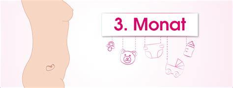 3 monat schwanger 12 schwangerschaftswoche babymarkt de ratgeber
