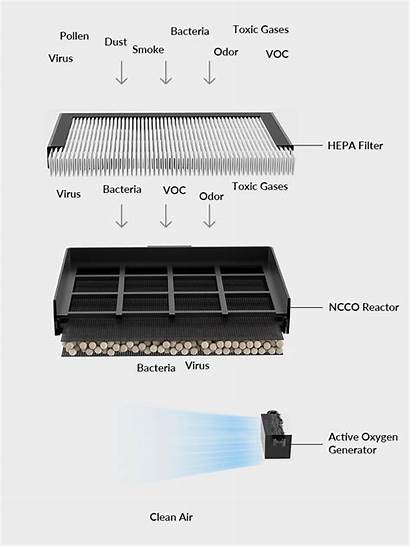 Air Purifier Mola Filter Works Medical Grade