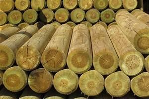 Palisaden Holz Rund : mit palisaden eine moderne gartengestaltung genie en ~ Frokenaadalensverden.com Haus und Dekorationen
