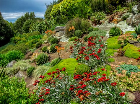 Garten Böschung Gestalten by Hang Bepflanzen Pflanzplan Garten Am Hang Gestalten 28
