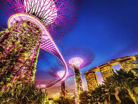 How To Experience Singapore By Night   Travel Insider