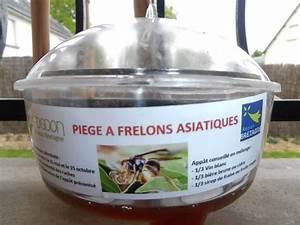 Piege A Frelon : le pi geage des reines frelon asiatique ~ Farleysfitness.com Idées de Décoration