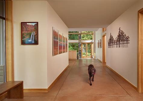 Home Design With Pets In Mind by 8 Amazingly Easy Tips For A Pet Friendly Home