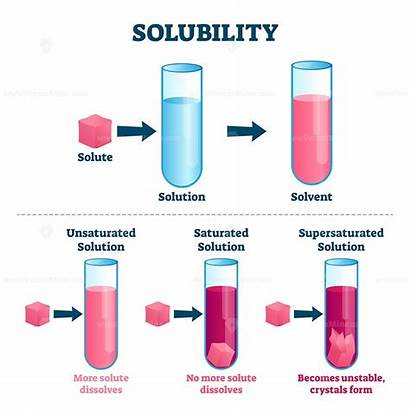 Solubility Vector Illustration Science Solution