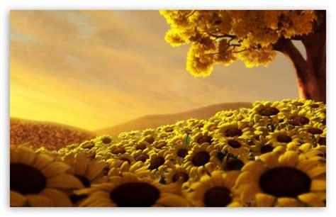 sunflower wallpapers wallpapersafari