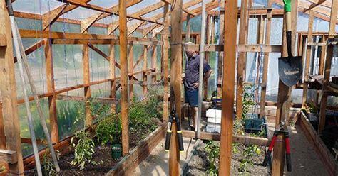 garden greenhouse indoor design layout ideas hometalk